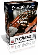 Nord Wave Strings Ensemble